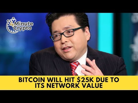 Bitcoin Will Hit $25K Due To Its Network Value